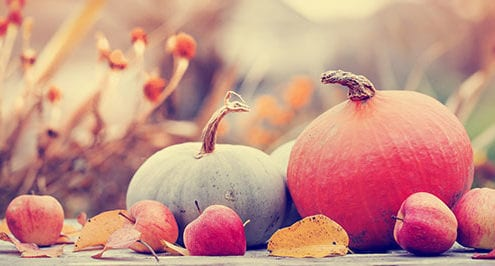 business communication thanksgiving