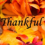"fall flowers with the word ""Thankful"""